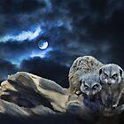 Midnight Watchers by ellenspaintings