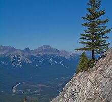 Canada. Banff National Park. Sulphur Mountain. Loneliness of Two. by vadim19
