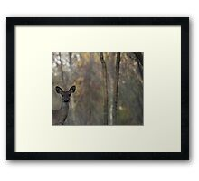 Deer is Proud of his Forest Framed Print