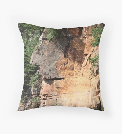 The Great Thinker Throw Pillow