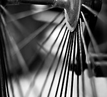 Bike Spokes by Stephen Knowles