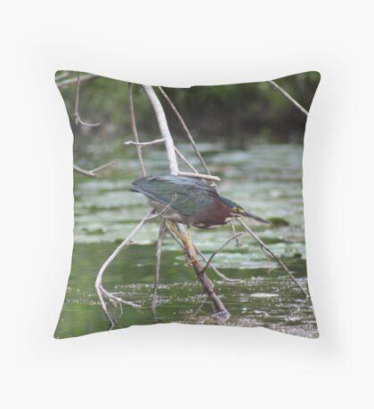 Green Heron Throw Pillow