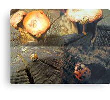 The Ladybug that Wandered Metal Print