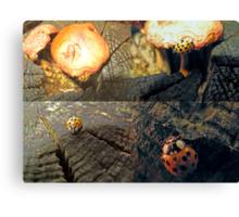 The Ladybug that Wandered Canvas Print