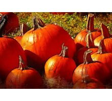 Fall Harvest - Textures Photographic Print