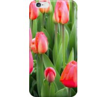 TulipiPhone iPhone Case/Skin