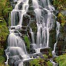 Storr Falls by EvaMcDermott