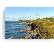 Cape Breton's rugged coast Canvas Print