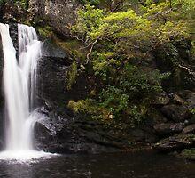 Inversnaid Waterfall by Lynne Morris