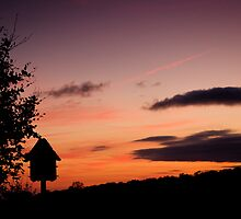 Dusk at the dovecote by moor2sea