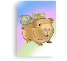 Guinea Pigs Canvas Print