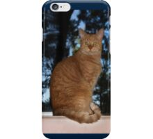 Mrrowr, Marmaduke the Marmalade Cat here!  - iPhone case iPhone Case/Skin