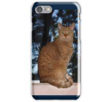 Mrrowr, Marmaduke the Marmalade Cat here!  - iPhone case iPhone Case/Skin