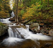 Autumn Below Ozone Falls by Tim Devine