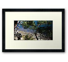 Gore Cove, Sydney Harbour Framed Print