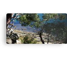 Gore Cove, Sydney Harbour Metal Print