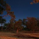 Archer River Roadhouse FNQ by Chris Cohen