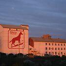 Dingo Flour Mill Fremantle Western Australia by Leonie Mac Lean