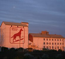 Dingo Flour Mill Fremantle Western Australia by Leonie Mac Lean
