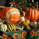 Pumpkin Harvest.... by DonnaMoore