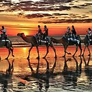 Camel Train Broome. by bowenite