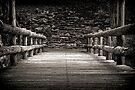 Troll Bridge by Pene Stevens