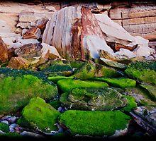 Mossy Rocks at Sunrise by RGA Photography