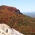 Beginnings of Autumn by Sandy Woolard
