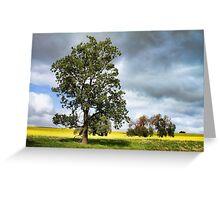 Field of Canola Cowra NSW  Greeting Card