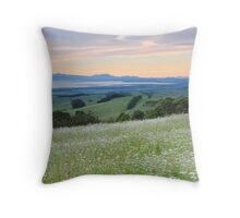 The Approaching Storm Throw Pillow