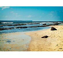 Shark Net Bay  Photographic Print