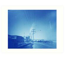 Sugar plume (Broadwater, NSW) Art Print