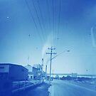 Sugar plume (Broadwater, NSW) by Soxy Fleming
