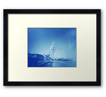 Sugar plume (Broadwater, NSW) Framed Print