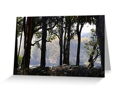 Summer under the Jarrah - C Matthews Greeting Card