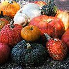 """Pebbled Pumpkins"" by waddleudo"