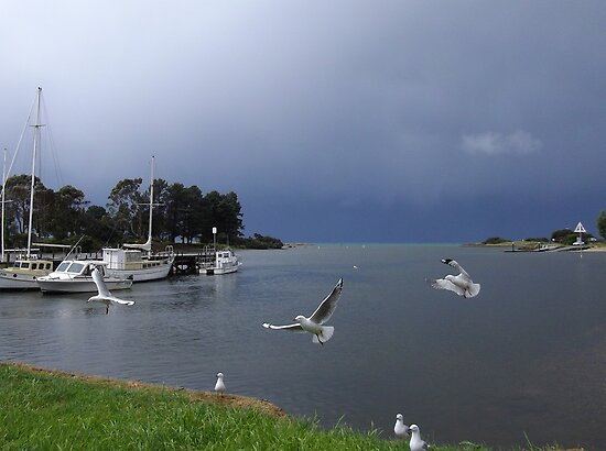 stormy skies at Wynyard Wharf, Tasmania by gaylene
