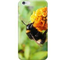 Busy Busy iPhone Case/Skin