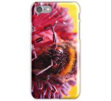 Pollen Thief iPhone Case/Skin