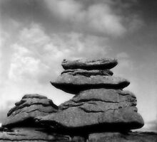 Dartmoor Rocks by Denise McDonald