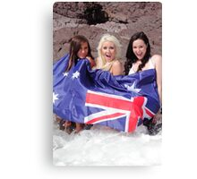 3 for the price of 1.. Canvas Print