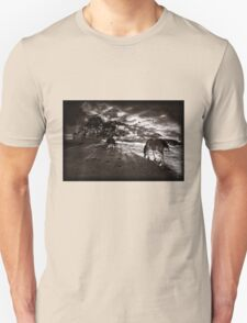 Horses 3 T shirt Unisex T-Shirt
