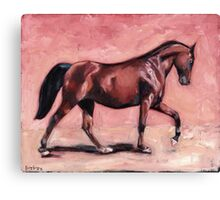 Walking with Purpose II ( horse portrait oil painting) Canvas Print