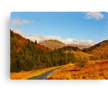 Duddon Valley Autumn Canvas Print