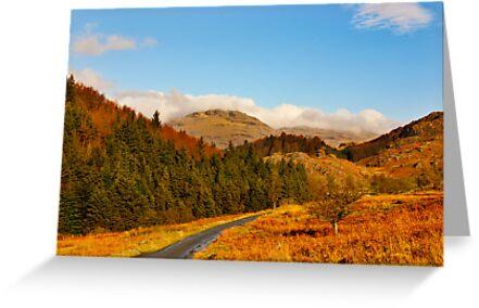 Duddon Valley Autumn by Trevor Kersley