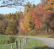 Country Roads by rasnidreamer