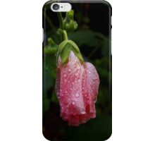 wet pink hollyhock bud i-phone case iPhone Case/Skin