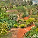 Stoney Bottom - A Garden in Bridgetown, Western Australia #2 by Elaine Teague