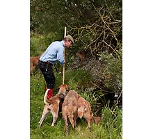 Mink Hunting Photographic Print