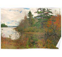 Toddy Lake, Bucksport, Maine, United States Poster